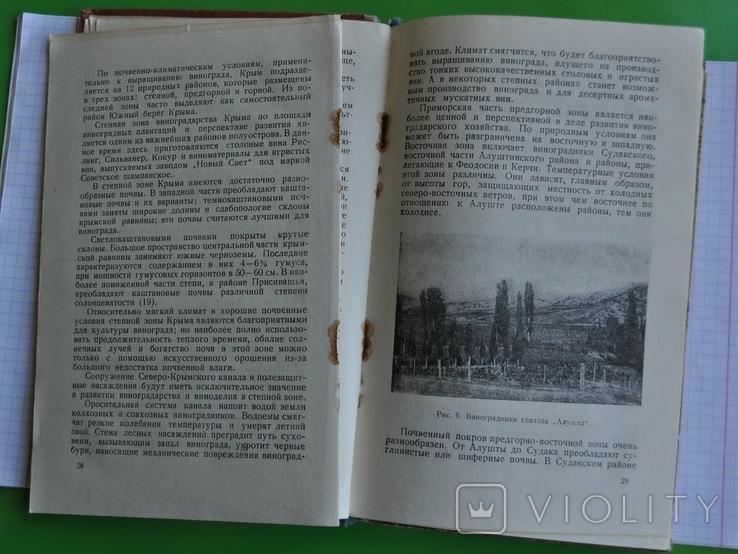 """""""Крымские вина"""" Крымиздат. 1954 г., фото №9"""