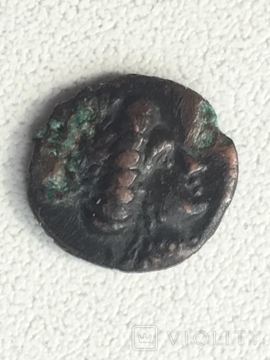 Коллекция монет Ольвии., фото №9