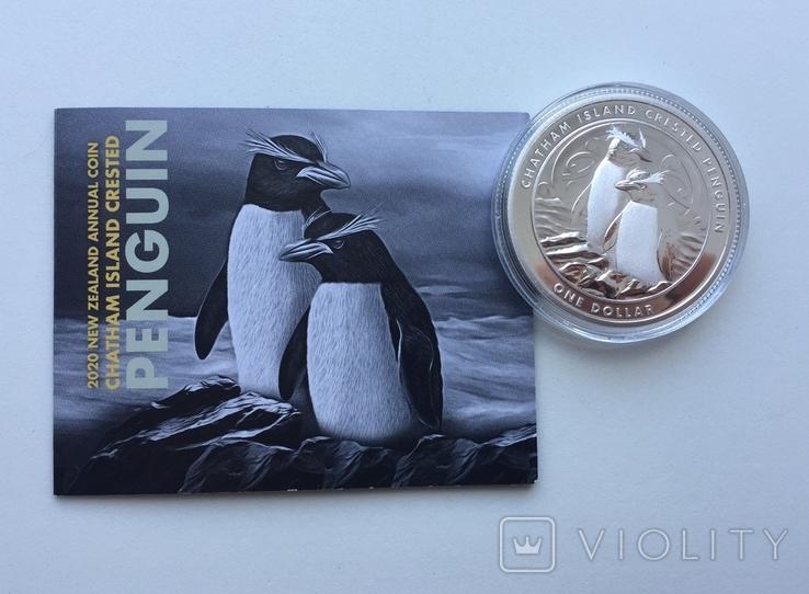 Хохлатый пингвин 2020 Новая Зеландия Фауна Сертификат, фото №4