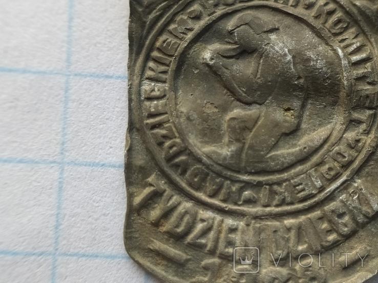 Знак Комітет опіки 1928 рік, фото №5