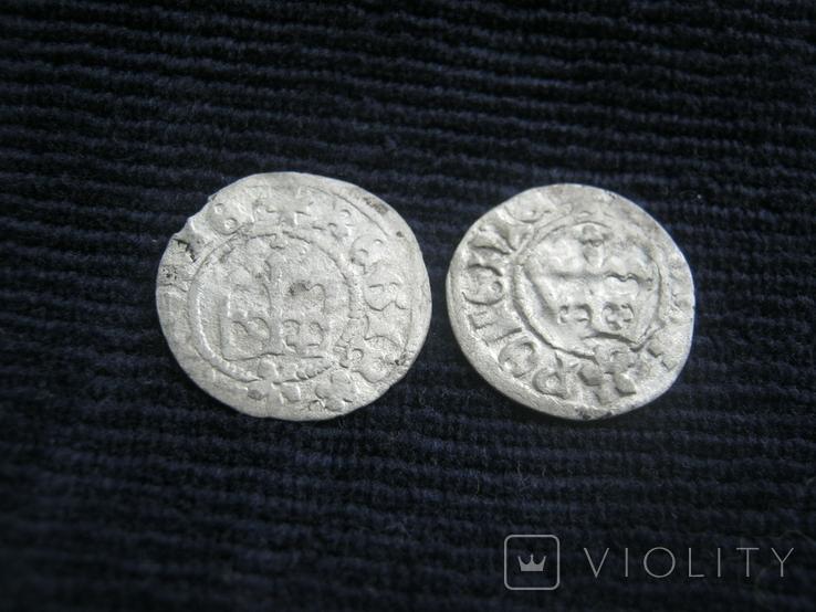 Полугрош, Казимір VI Ягеллончик, полугрош, Ян Ольбрахт, фото №4