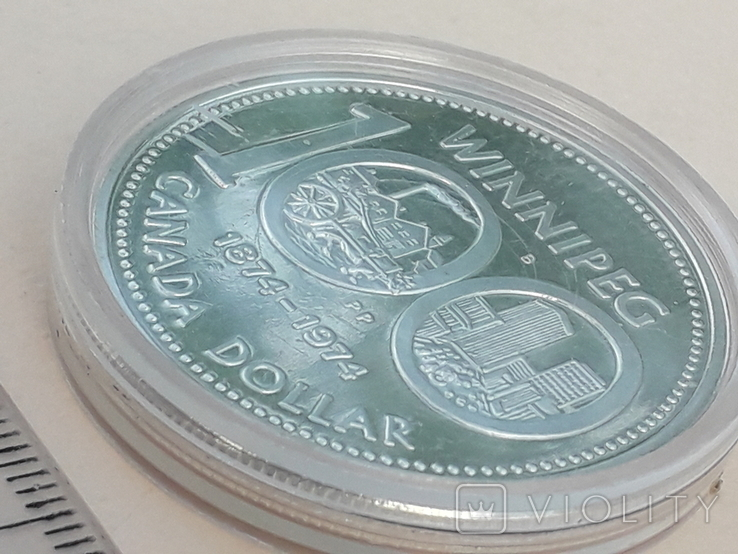 1 доллар, Канада, 1974 год, 100 лет городу Виннипег, серебро, фото №3
