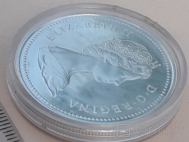 1 доллар, Канада, 1974 год, 100 лет городу Виннипег, серебро, фото №5