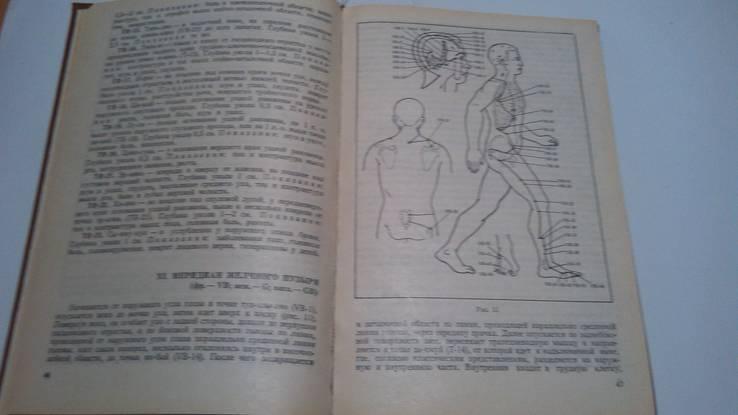 Практическое руководство по аурикулярной корпорвльной иглотерапии, фото №4