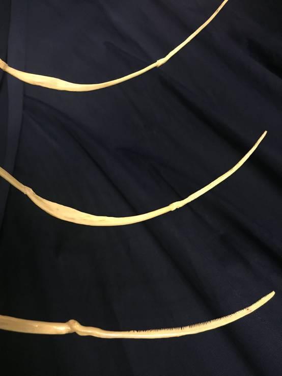 Скульптура «Кадавр I. Хранитель времени», фото №5