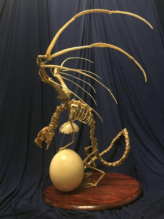 Скульптура «Кадавр I. Хранитель времени», фото №7
