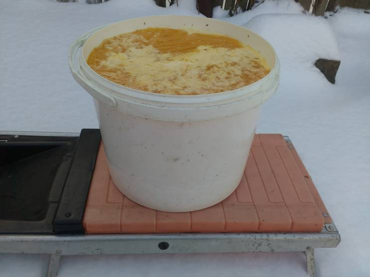 Мед ведро меда 15 килограмм