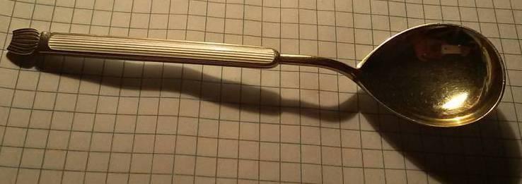 Ложка серебряная в эмалях для сахара или специй 1, фото №4