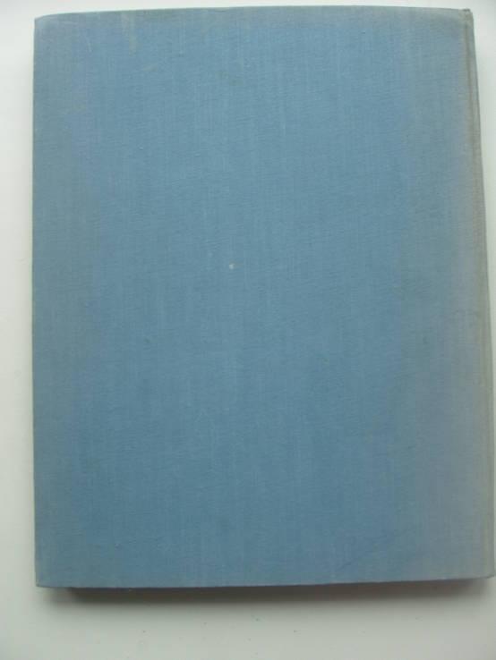 1960 Заповедник Аскания-Нова, фото №5