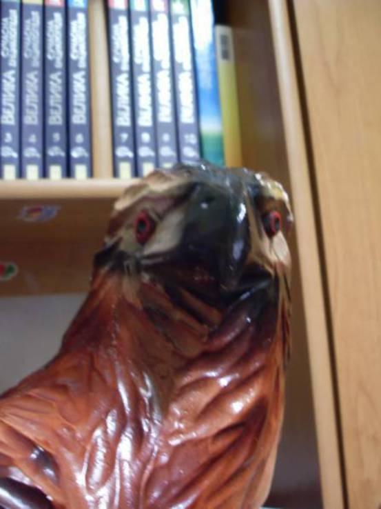 Копілка орел, фото №5