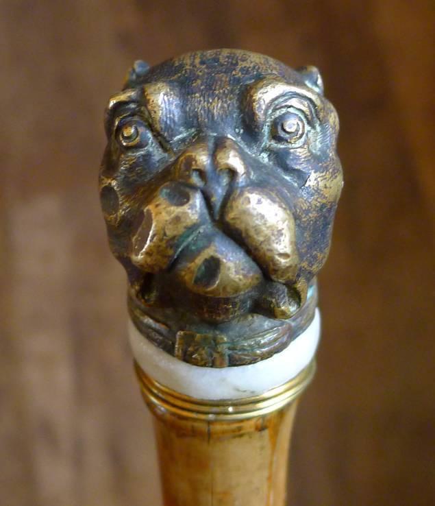 Трость бамбуковая с бронзовым набалдашником бульдогом.