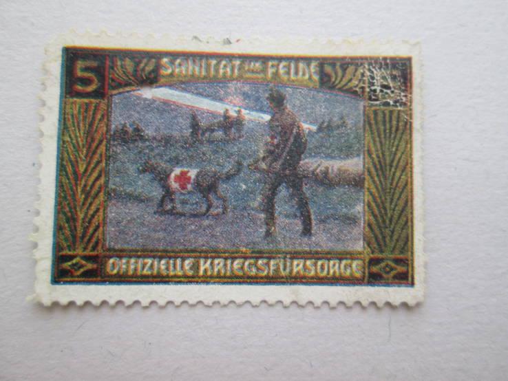 Венгрия Собаки санитары *