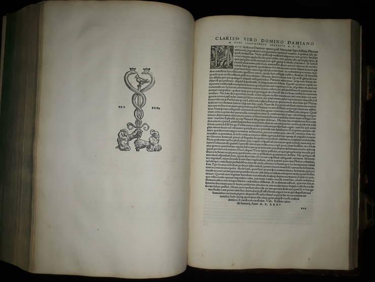 1535 Палеотип - Плиний, Естественная история