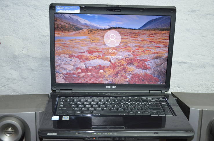 Ноутбук Toshiba Satellite L305-S5875