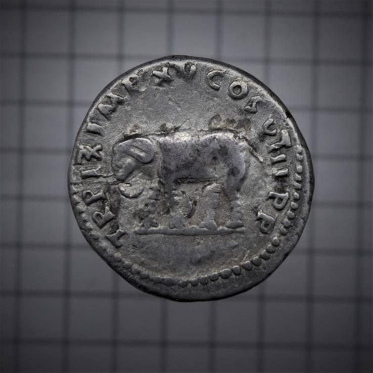 Денарий Тита - Слон