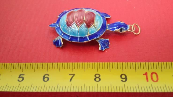 Черепаха, фото №4