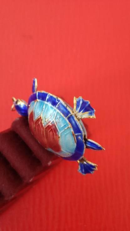 Черепаха, фото №10