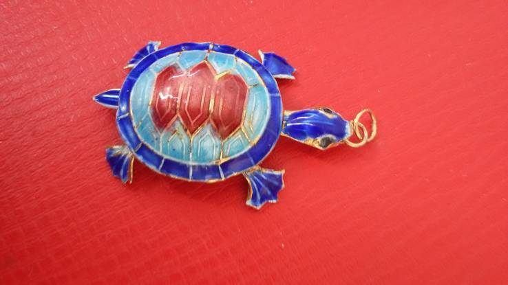 Черепаха, фото №11