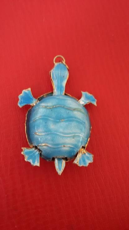 Черепаха, фото №12