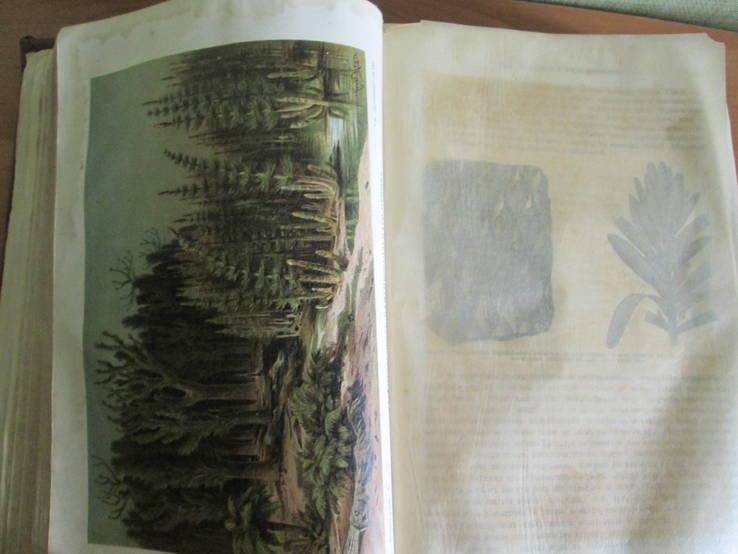 История земли. Описательная геология 1896 год., фото №16