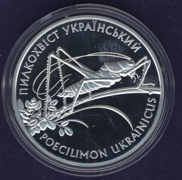 10 гривен 2006 Пилкохвіст український