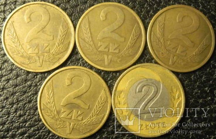 2 злотих Польща (порічниця) 5шт, всі різні, фото №3