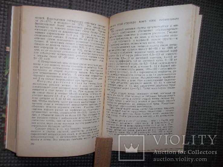 Книга цветовода.1983 год., фото №7
