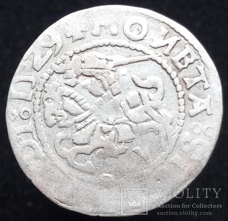 Півгрош 1529 р. м.д. Вільно (7) (дзеркальні N, V на аверсе, Іванаускас13 1S367-11(RRR))