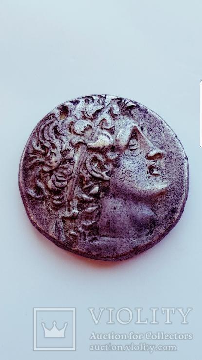 Птолемей Xll, тетрадрахма