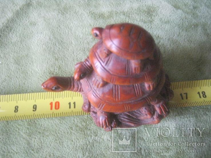 Три черепахи., фото №4