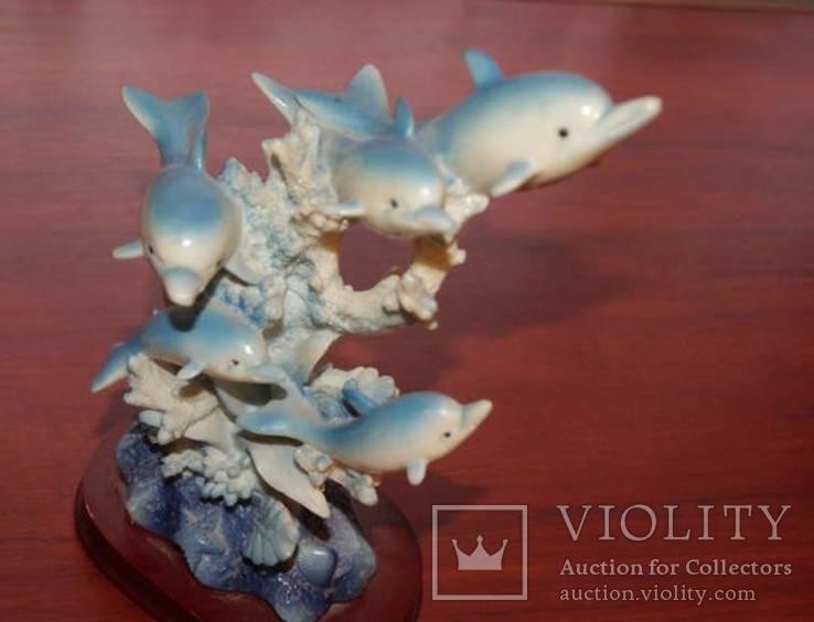 Дельфинчики, фото №5