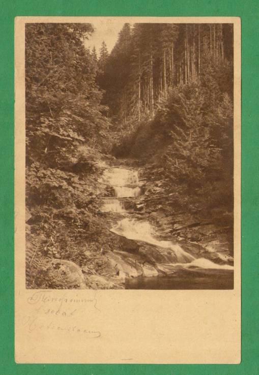 1945 Чехословакия Лес Папоротник Река Фотооткрытка, фото №2