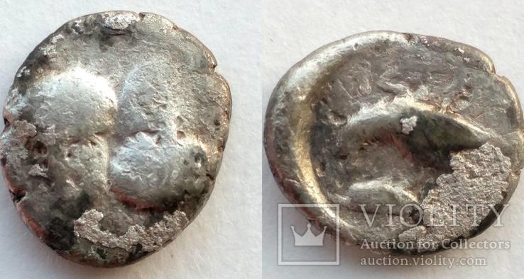 Гемидрахма Истрия 4 век до н.э. (64_19)