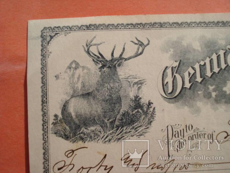 США чек 1900 год на 40,00$ Олень