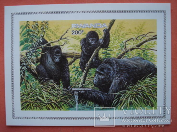 Руанда обезьяны гориллы БП MNH**