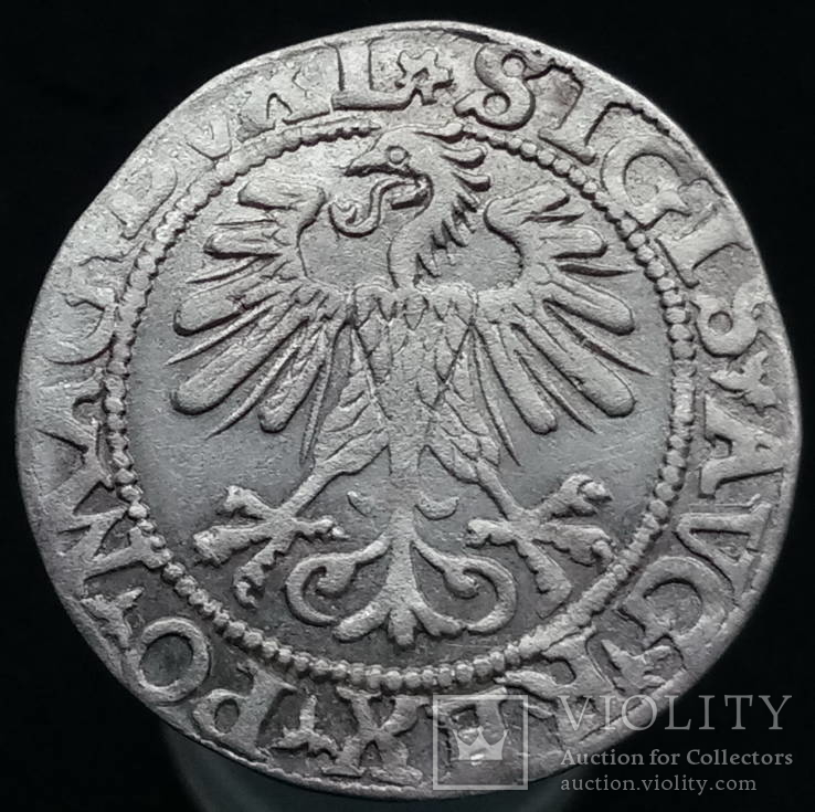 Півгрош 1560 р. м.д. Вільно (розета, Іванаускас 4SA101-26(R))