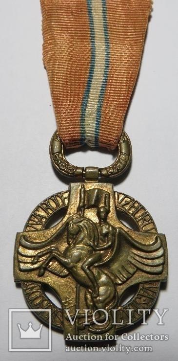 Чехословацкая революционная медаль, 1918 года., фото №2