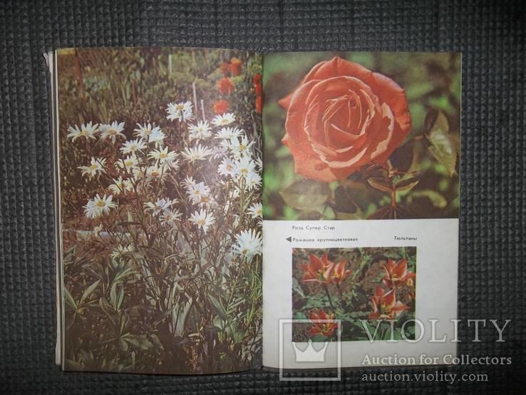 Садово-огородный участок.1990 год., фото №6
