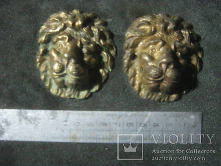 Добрые львы.Пара., фото №4