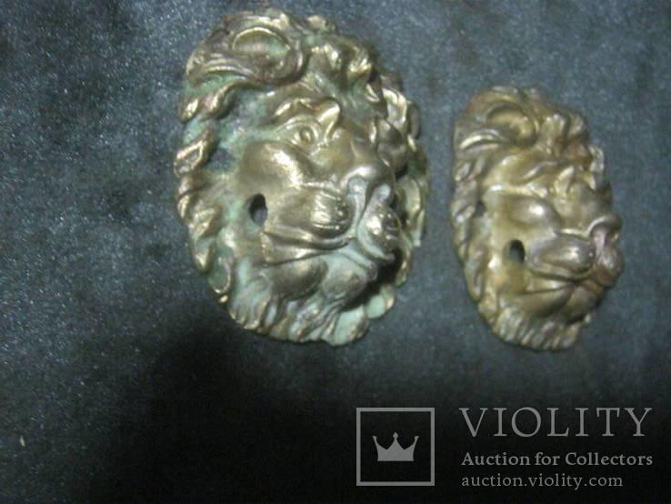 Добрые львы.Пара., фото №6