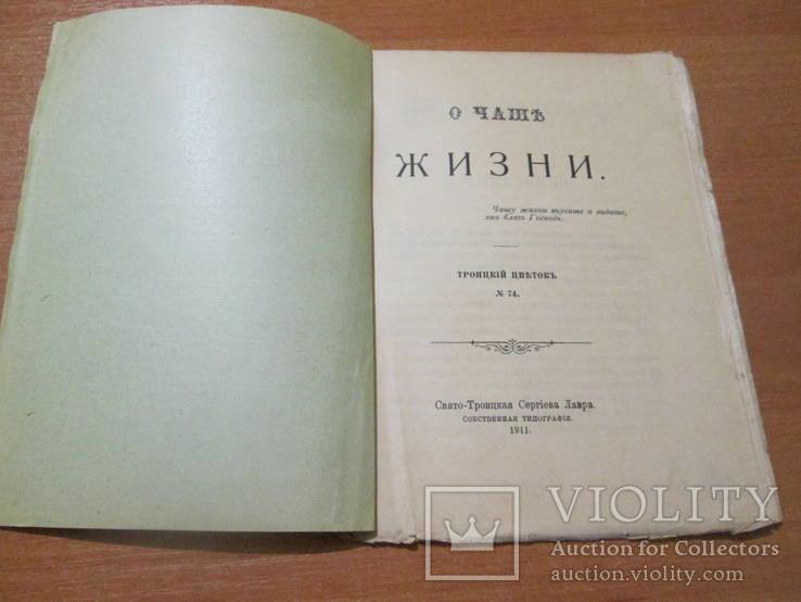 О чаше жизни. 1911 год., фото №5