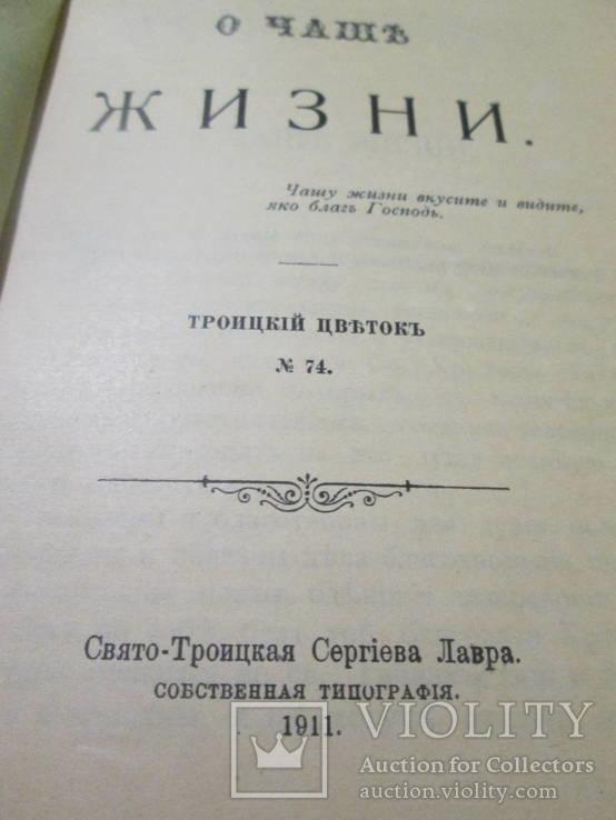 О чаше жизни. 1911 год., фото №6