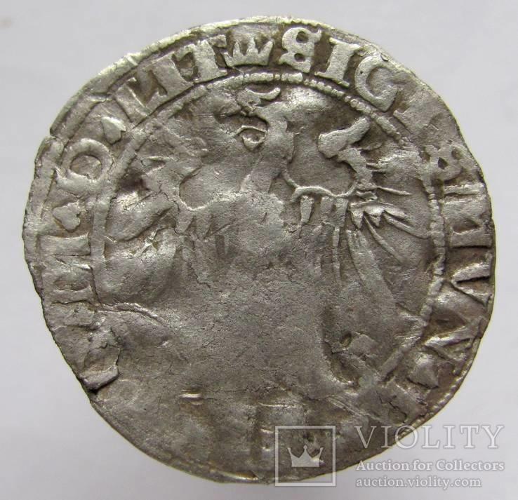 Литовский грош 1536 года
