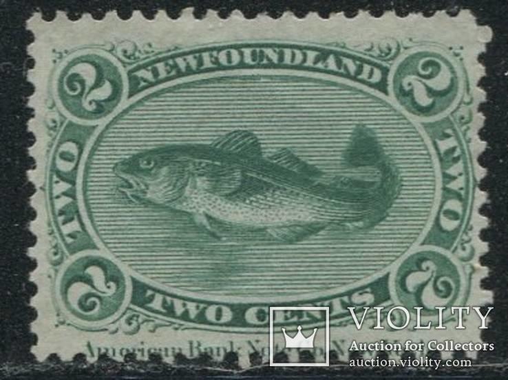 1866 Ньюфаундленд треска рыба
