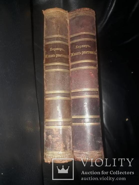 1901 Кернер - Жизнь растений в двух томах