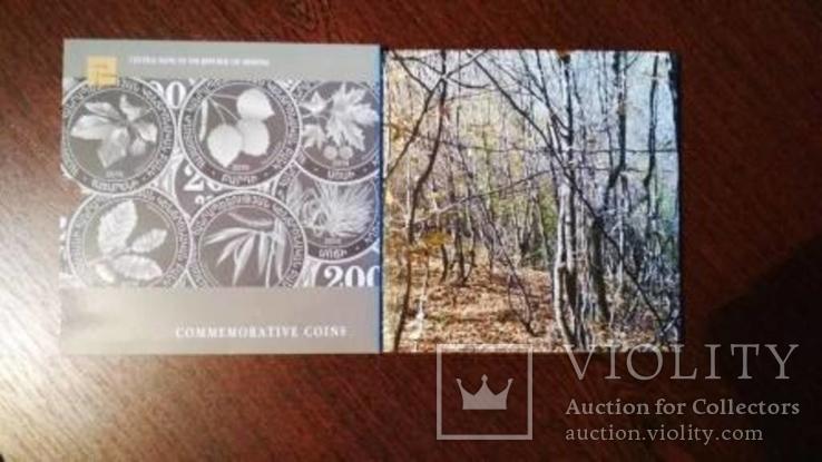 Набор памятных монет дикие деревья Армении 200 драм 2014, фото №7