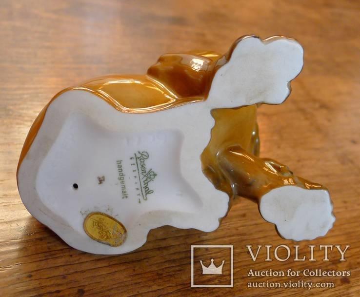 Собачка Rosenthal с этикеткой, подписная, автор G Küspert, фото №11
