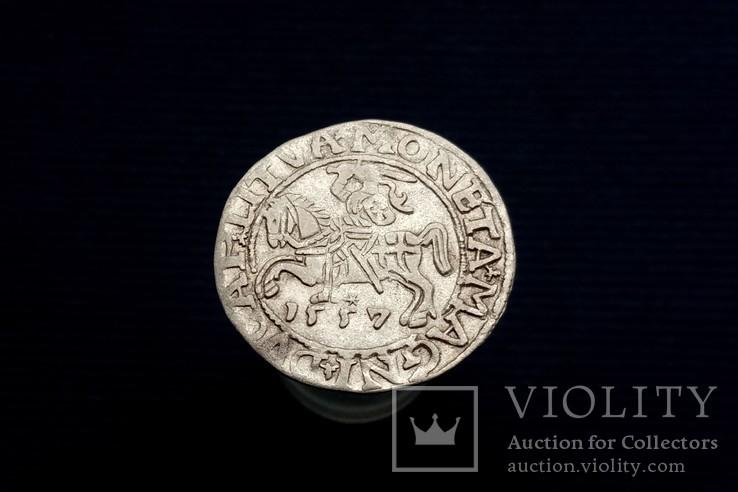 Півгрош 1557 р., Вільно