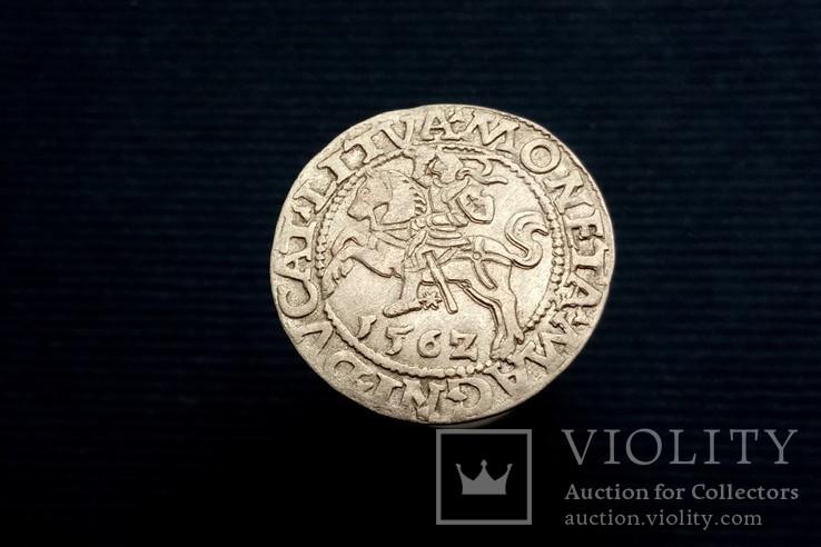 Півгрош 1562 р., Вільно