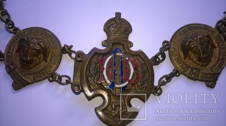 Нагрудная цепь мастера Старинного Королевского Ордена Буйволов (RAOB), Англия 19 век